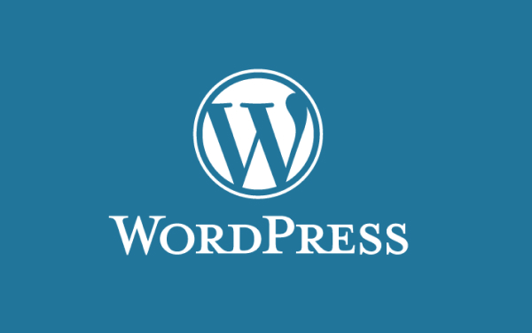 Should you learn to Use WordPress?